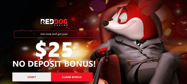 reddog-casino-review